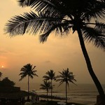 @instagram: This beautiful sunset spotted from the Taj Fort Aguada and spa  resort on the sidelines of a conference today. ' #goa #india #sunset #coconut #palms #hues #mellow #conference #candolim #northgoa #unwinding #fortaguadagoa #coconutpalms #mercifulmasterpiece
