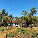 @instagram: Amazing old house near to Cavelossim ???? #goa #india #travelbirdie #travelblogger #travel #cavelossim #digitalnomad #digitalnomads #digitalnomadstyle #digitalnomadlife